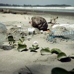 Jak przetwarza się odpady?