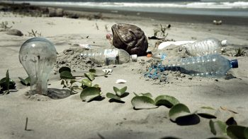 Bezpośredni odnośnik: %sJak przetwarza się odpady?